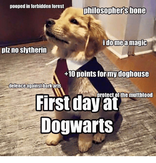 doghouse: pooped in forbidden forest  philosophers bone  ome a magic  plz no slytherin  +10 points for my doghouse  defence against bark arts  protect of the muttblood  First day at  Dog Warts