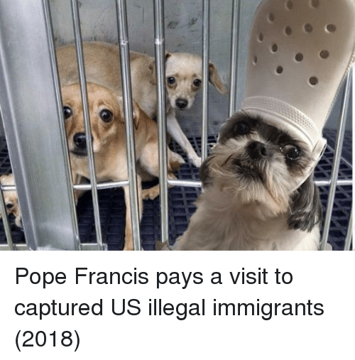 Pope Francis, Pope Francis, and Captured: Pope Francis pays a visit to captured US illegal immigrants (2018)