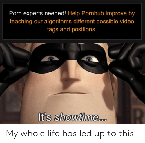 Life, Pornhub, and Help: Porn experts needed! Help Pornhub improve by  teaching our algorithms different possible video  tags and positions.  R  It's showtime.0 My whole life has led up to this