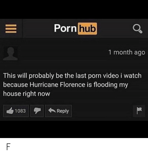 My House, Porn Hub, and House: Porn hub  1 month ago  This will probably be the last porn video i watch  because Hurricane Florence is flooding my  house right now  Reply  1083  II F