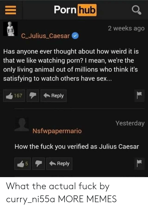 caesar: Porn hub  2 weeks ago  C_Julius Caesar  Has anyone ever thought about how weird it is  that we like watching porn? I mean, we're the  only living animal out of millions who think it's  satisfying to watch others have sex...  Reply  167  Yesterday  Nsfwpapermario  How the fuck you verified as Julius Caesar  Reply  5  LO What the actual fuck by curry_ni55a MORE MEMES