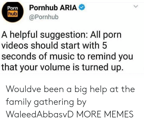aria: Porn  hub  Pornhub ARIA  @Pornhub  A helpful suggestion: All porn  videos should start with 5  seconds of music to remind you  that your volume is turned up. Wouldve been a big help at the family gathering by WaleedAbbasvD MORE MEMES
