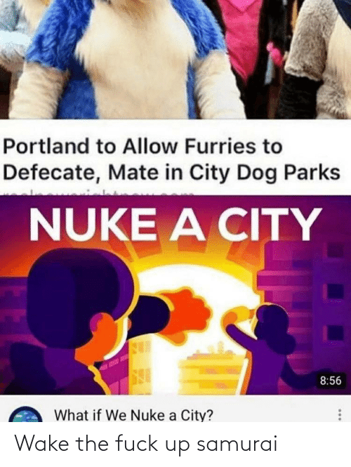 nuke: Portland to Allow Furries to  Defecate, Mate in City Dog Parks  NUKE A CITY  8:56  What if We Nuke a City? Wake the fuck up samurai