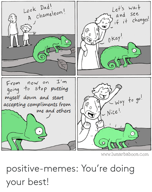 Best: positive-memes:  You're doing your best!
