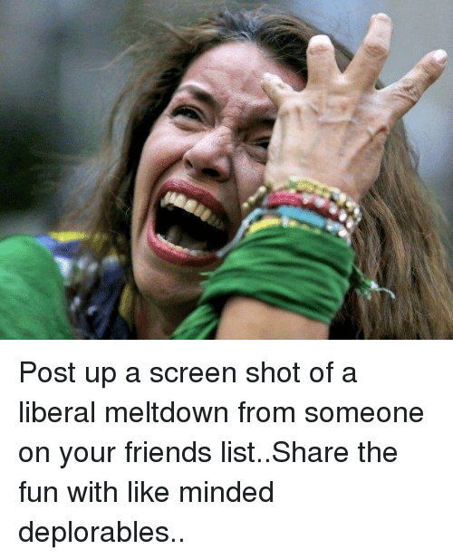 Memes, Liberalism, and 🤖: Post up a screen shot of a liberal meltdown from someone on your friends list..Share the fun with like minded deplorables..