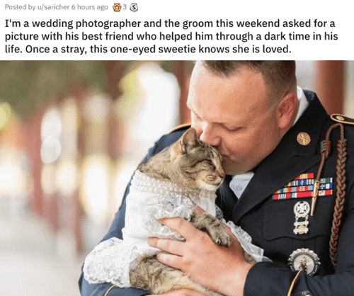 Best Friend, Life, and Best: Posted by u/saricher 6 hours ago 3 3  I'm a wedding photographer and the groom this weekend asked for a  picture with his best friend who helped him through a dark time in his  life. Once a stray, this one-eyed sweetie knows she is loved.