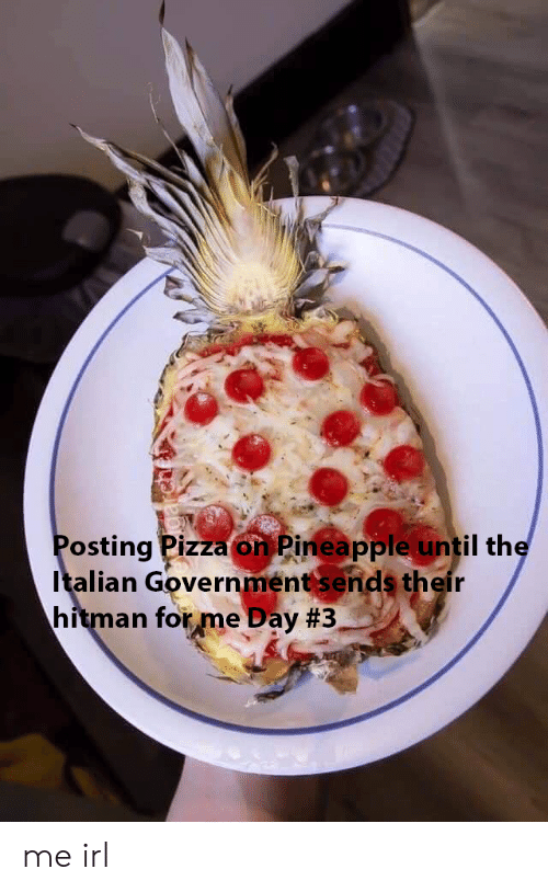 Pizza, Pineapple, and Government: Posting Pizza on Pineapple until the  Italian Government sends their  hitman forme Day me irl