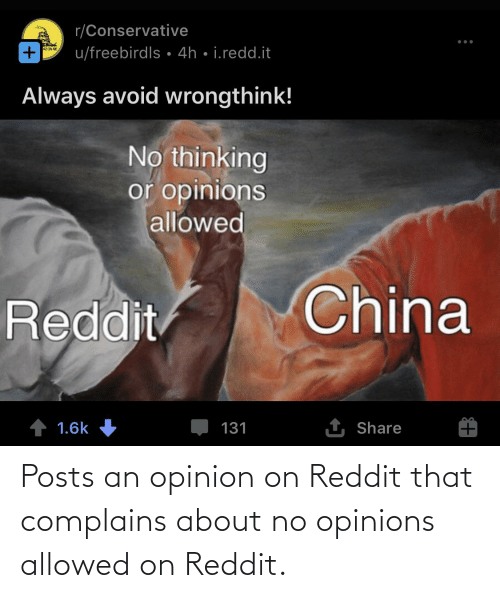 opinions: Posts an opinion on Reddit that complains about no opinions allowed on Reddit.