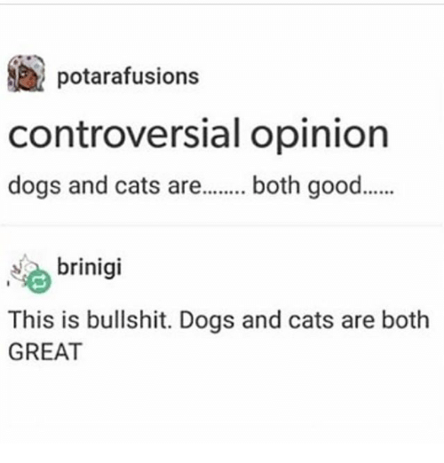 Cats, Dogs, and Ironic: potarafusions  controversial opinion  dogs and cats are.. both good.  brinigi  This is bullshit. Dogs and cats are both  GREAT