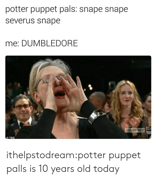 Dumbledore, Tumblr, and Blog: potter puppet pals: snape snape  severus snape  me: DUMBLEDORE  SAGAWARDSto  TBS ithelpstodream:potter puppet palls is 10 years old today