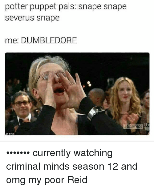 Dumbledore, Memes, and Omg: potter puppet pals: snape snape  Severus Snape  mee: DUMBLEDORE  tb  ASAGAWARDS ••••••• currently watching criminal minds season 12 and omg my poor Reid