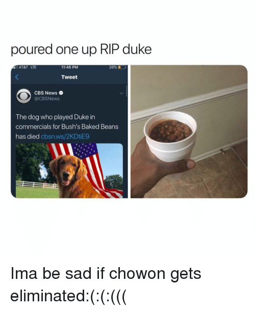 Baked, News, and Cbs: poured one up RIP duke  AT&T LTE  11:45 PM  26%  Tweet  CBS News  @CBSNews  The dog who played Duke in  commercials for Bush's Baked Beans  has died cbsn.ws/2KDtiE9 Ima be sad if chowon gets eliminated:(:(:(((