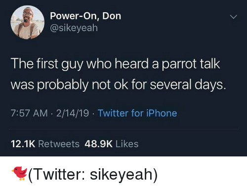 Iphone, Twitter, and Power: Power-On, Don  @sikeyealh  The first guy who heard a parrot talk  was probably not ok for several days.  7:57 AM . 2/14/19 Twitter for iPhone  12.1K Retweets 48.9K Likes 🐦(Twitter: sikeyeah)