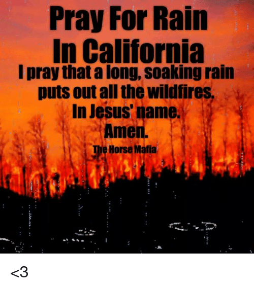 Jesus, Memes, and California: Pray For Rain  In California  I pray that a long, soaking rain  puts out all the wildfires  In Jesus' name  Amen.  Horse Mafia <3