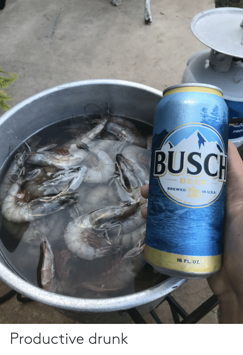 Beer, Drunk, and Busch Beer: PRe  BUSCH  BEER  IN U.S.A.  BREWED  EUSE-9  16 FL. OZ. Productive drunk