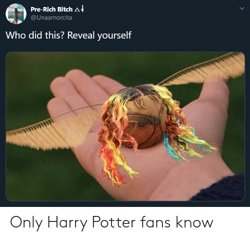 Bitch, Harry Potter, and Potter: Pre-Rich Bitch A 4  @Unaamorcita  Who did this? Reveal yourself Only Harry Potter fans know