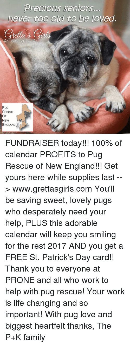Anaconda, England, and Family: Precious seniors.  never coo old to be loved.  PUG  RESCUE  OF  NEW  ENGLAND FUNDRAISER today!!! 100% of calendar PROFITS to Pug Rescue of New England!!! Get yours here while supplies last --> www.grettasgirls.com You'll be saving sweet, lovely pugs who desperately need your help, PLUS this adorable calendar will keep you smiling for the rest 2017 AND you get a FREE St. Patrick's Day card!! Thank you to everyone at PRONE and all who work to help with pug rescue! Your work is life changing and so important! With pug love and biggest heartfelt thanks, The P+K family