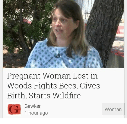 Pregnant, Lost, and Gawker: Pregnant Woman Lost in  Woods Fights Bees, Gives  Birth, Starts Wildfire  Gawker  1 hour ago  Woman