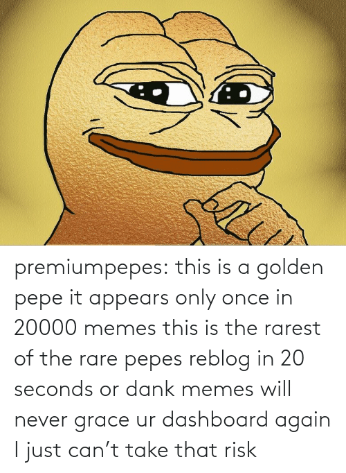 risk: premiumpepes:  this is a golden pepe it appears only once in 20000 memes this is the rarest of the rare pepes reblog in 20 seconds or dank memes will never grace ur dashboard again   I just can't take that risk