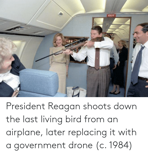 Living: President Reagan shoots down the last living bird from an airplane, later replacing it with a government drone (c. 1984)