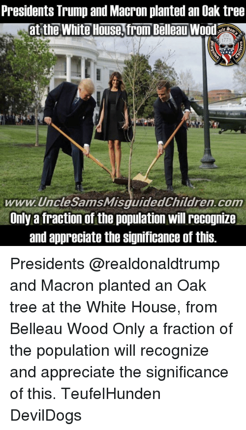 Memes, White House, and Appreciate: Presidents Trump and Macron planted an Oak tree  at the White House,from Bellcad  1775  www.UncleSamsMisquidedChildren.com  Unly a fraction of the population will recognize  and appreciate the Significance of this Presidents @realdonaldtrump and Macron planted an Oak tree at the White House, from Belleau Wood Only a fraction of the population will recognize and appreciate the significance of this. TeufelHunden DevilDogs