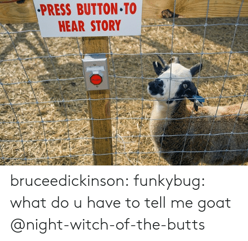 Tumblr, Goat, and Blog: PRESS BUTTON TO  HEAR STORY bruceedickinson:  funkybug:  what do u have to tell me goat  @night-witch-of-the-butts