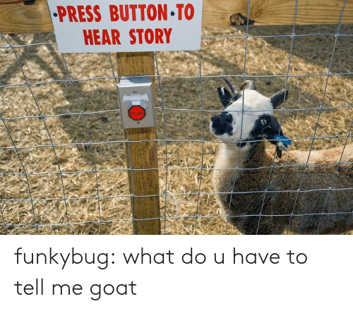 Tumblr, Goat, and Blog: PRESS BUTTON TO  HEAR STORY funkybug:  what do u have to tell me goat