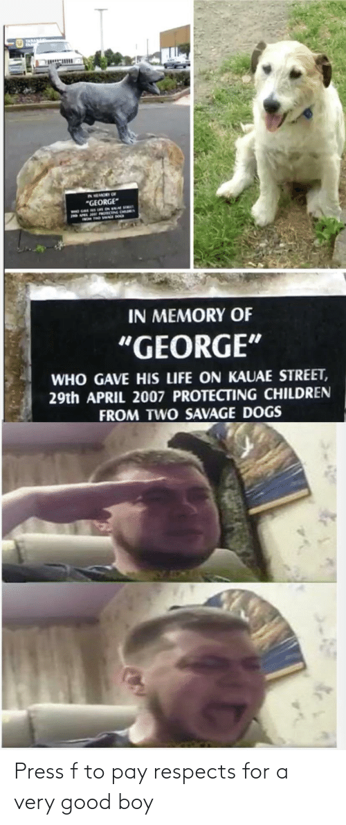 Respects: Press f to pay respects for a very good boy