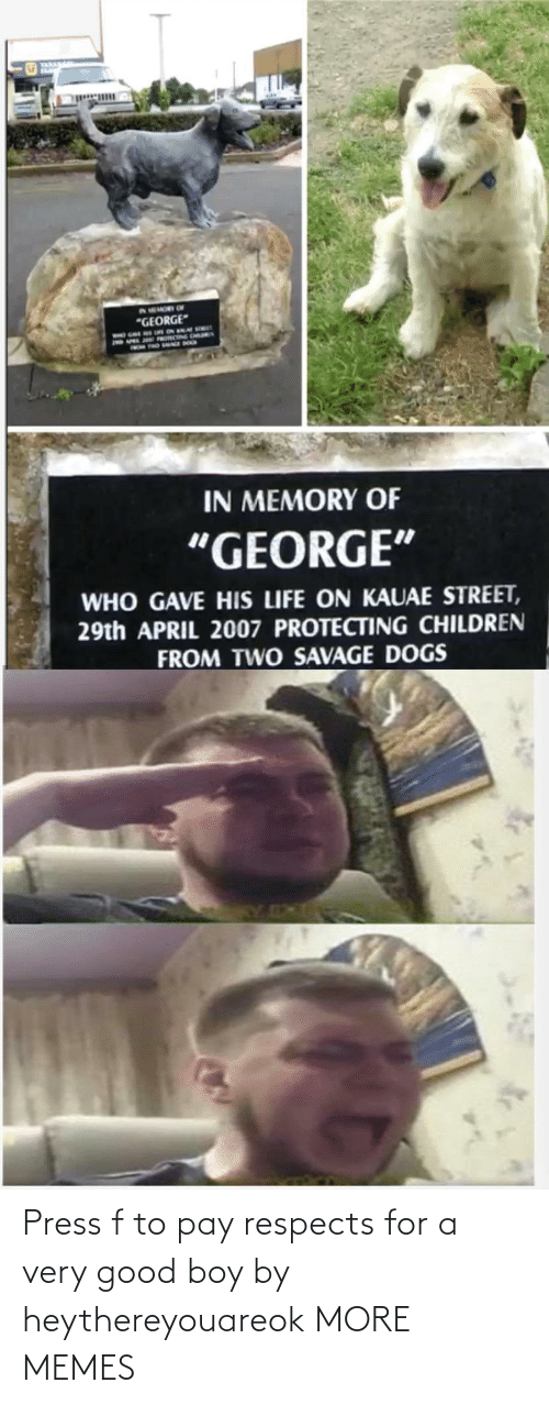 A Very Good Boy: Press f to pay respects for a very good boy by heythereyouareok MORE MEMES