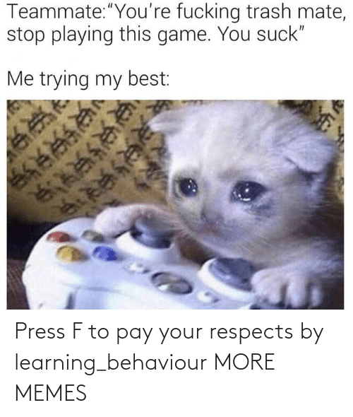Learning: Press F to pay your respects by learning_behaviour MORE MEMES