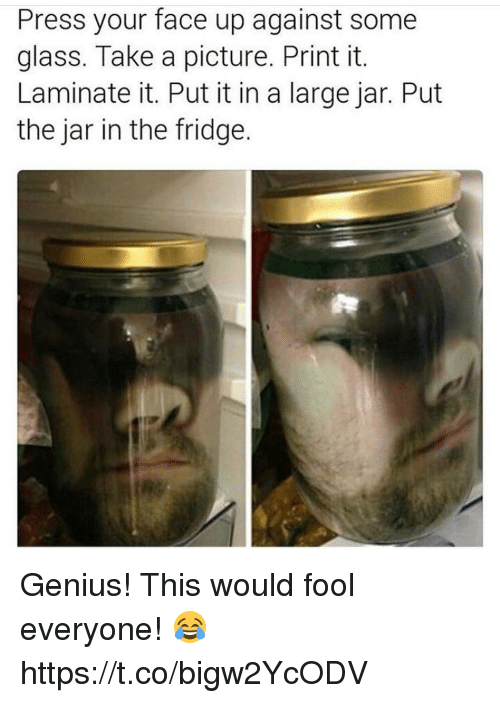 Memes, Genius, and A Picture: Press your face up against some  glass. Take a picture. Print it.  Laminate it. Put it in a large jar. Put  the jar in the fridge. Genius! This would fool everyone! 😂 https://t.co/bigw2YcODV