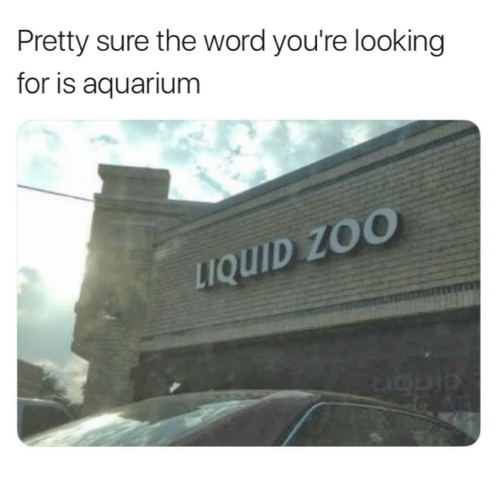 Aquarium, Word, and Looking: Pretty sure the word you're looking  for is aquarium  uQUID ZO