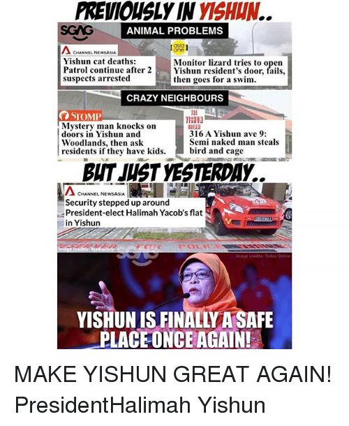 Crazy, Memes, and Animal: PREVIOUSLY IN YISHIN.  SGAG  ANIMAL PROBLEMS  asia  one  Yishun cat deaths:  Patrol continue after 2Yishun resident's door,  suspects arrested  Monitor lizard tries to open  then goes for a swim.  fails,  CRAZY NEIGHBOURS  Mystery man knocks on  doors in Yishun and  Woodlands, then ask  residents if they have kids. bird and cage  316 A Yishun ave 9:  Semi naked man steals  BUT JUST YESTERDAY..  Λ CHANNEL NEWASA  Security stepped up around  President-elect Halimah Yacob's flat  in Yishurn  YISHUN IS FINALLY A SAFE  PLACEONCE AGAIN! MAKE YISHUN GREAT AGAIN! PresidentHalimah Yishun
