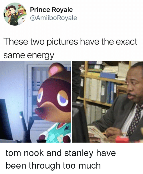 Energy, Prince, and Too Much: Prince Royale  @AmiiboRoyale  These two pictures have the exact  same energy tom nook and stanley have been through too much