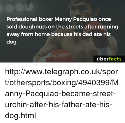 manny pacquiao: Professional boxer Manny Pacquiao once  sold doughnuts on the streets after running  away from home because his dad ate his  dog.  uber  facts http://www.telegraph.co.uk/sport/othersports/boxing/4940399/Manny-Pacquiao-became-street-urchin-after-his-father-ate-his-dog.html