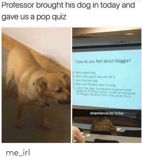 Attendance: Professor brought his dog in today and  gave us a pop quiz  How do you feel about Maggie?  A She's a good dog  8 She's a very good dog, yes she is  CShe's the best dog  0She is the Platonic ideal of a dog.  E100n't ke dogs but despite my generalized  disike of all things canine, I make an exception  for Maggie, because that's how great she is  Attendance for today me_irl