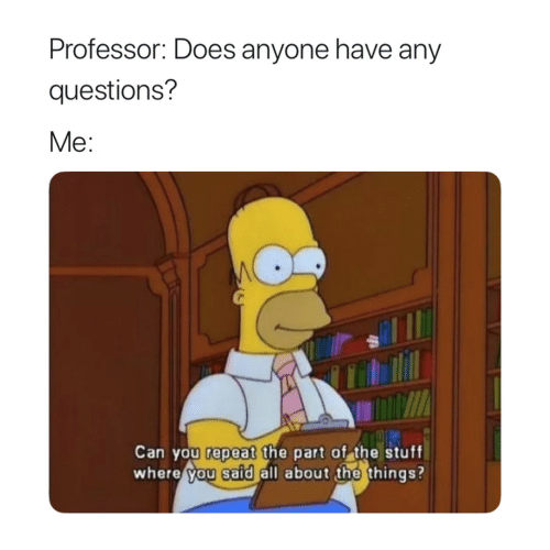 Stuff, Questions, and Can: Professor: Does anyone have any  questions?  Me:  Can you repeat the part of the stuff  where you said all about the things?