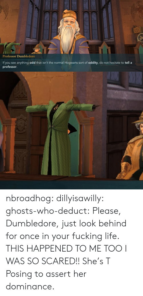 This Happened To Me: Professor Dumbledore  If you see anything odd that isn't the normal Hogwarts sort of oddity, do not hesitate to tell a  professor. nbroadhog:  dillyisawilly:  ghosts-who-deduct: Please, Dumbledore, just look behind for once in your fucking life.  THIS HAPPENED TO ME TOO I WAS SO SCARED!!   She's T Posing to assert her dominance.