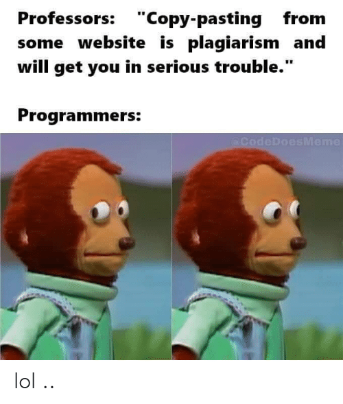 "Lol, Website, and Plagiarism: Professors: ""Copy-pasting from  some website is plagiarism and  will get you in serious trouble.""  Programmers:  (@CodeDoesMeme lol .."