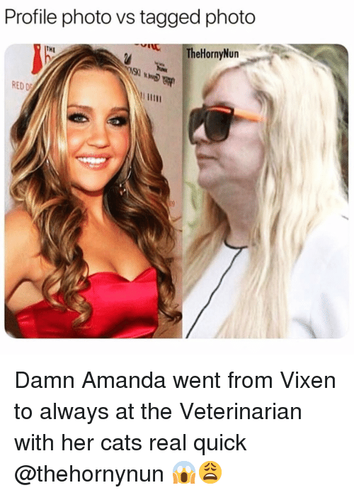 Cats, Funny, and Tagged: Profile photo vs tagged photo  TheHornyNun  THE  RED Damn Amanda went from Vixen to always at the Veterinarian with her cats real quick @thehornynun 😱😩