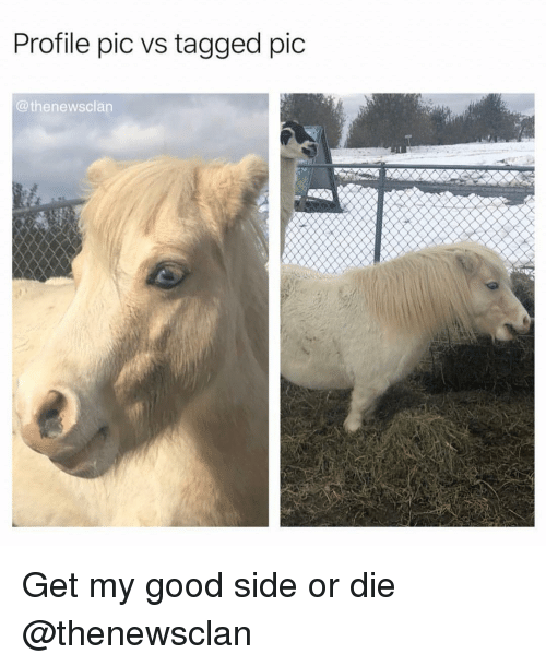 Good, Tagged, and Girl Memes: Profile pic vs tagged pic  @thenewsclan Get my good side or die @thenewsclan