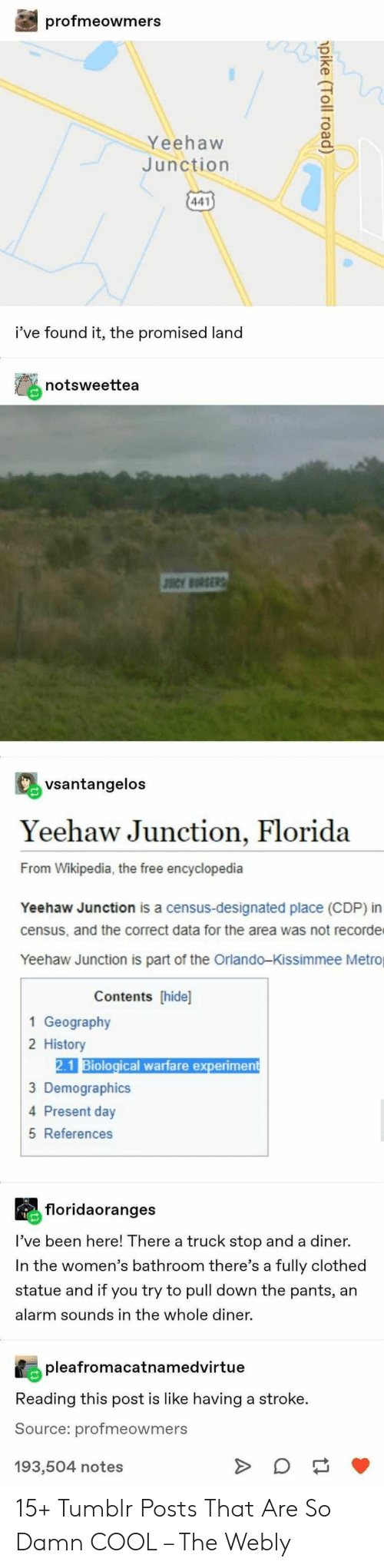 Tumblr, Wikipedia, and Alarm: profmeowmers  Yeehaw  Junction  441  i've found it, the promised land  notsweettea  JSCY BURGERS  vsantangelos  Yeehaw Junction, Florida  From Wikipedia, the free encyclopedia  Yeehaw Junction is a census-designated place (CDP) in  census, and the correct data for the area was not recorde  Yeehaw Junction is part of the Orlando-Kissimmee Metro  Contents [hide]  1 Geography  2 History  2.1 Biological warfare experiment  3 Demographics  4 Present day  5 References  floridaoranges  I've been here! There a truck stop and a diner.  In the women's bathroom there's a fully clothed  statue and if you try to pull down the pants, an  alarm sounds in the whole diner  pleafromacatnamedvirtue  Reading this post is like having a stroke.  Source: profmeowmers  notes  pike (Toll road) 15+ Tumblr Posts That Are So Damn COOL – The Webly