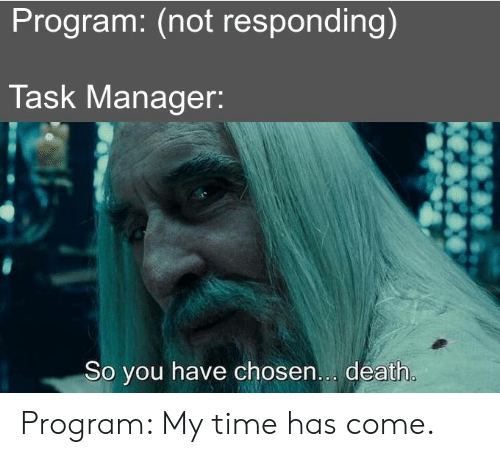 Death, Time, and Chosen: Program: (not responding)  Task Manager:  So you have chosen... death. Program: My time has come.