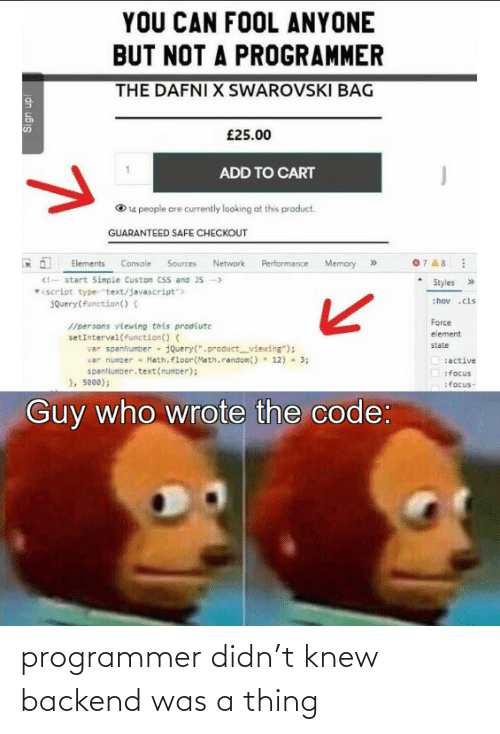 thing: programmer didn't knew backend was a thing