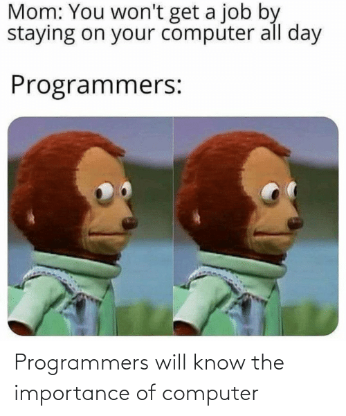 Computer: Programmers will know the importance of computer
