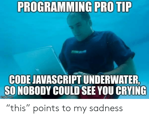 """Crying, Pro, and Programming: PROGRAMMING PRO TIP  CODE JAVASCRIPT UNDERWATER  SO NOBODY COULD SEE YOU CRYING  imgfip.com """"this"""" points to my sadness"""