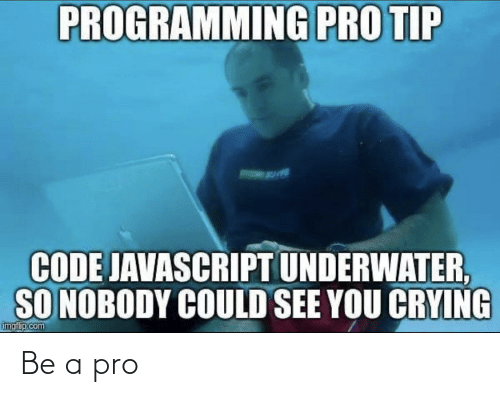 javascript: PROGRAMMING PRO TIP  CODE JAVASCRIPT UNDERWATER,  SO NOBODY COULD SEE YOU CRYING  imgf p.com Be a pro