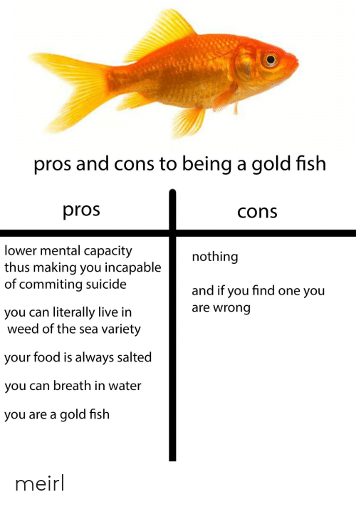 capacity: pros and cons to being a gold fish  pros  cons  lower mental capacity  thus making you incapable  of commiting suicide  nothing  and if you find one you  are wrong  you can literally live in  weed of the sea variety  your food is always salted  you can breath in water  you are a gold fish meirl