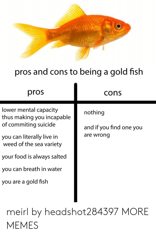 capacity: pros and cons to being a gold fish  pros  cons  lower mental capacity  thus making you incapable  of commiting suicide  nothing  and if you find one you  are wrong  you can literally live in  weed of the sea variety  your food is always salted  you can breath in water  you are a gold fish meirl by headshot284397 MORE MEMES