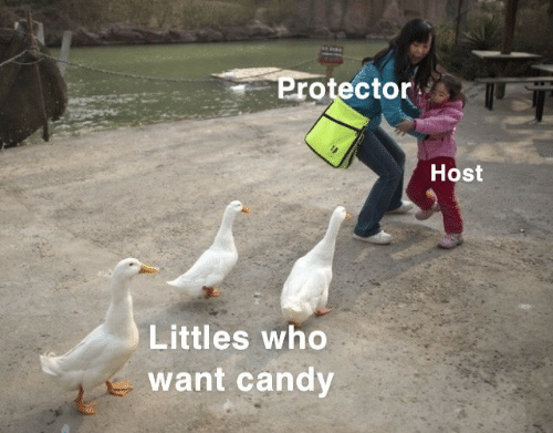 Candy, Who, and Host: Protector  Host  Littles who  want candy
